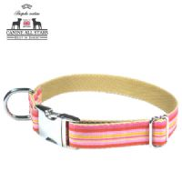 DOG COLLAR - TROPICAL SUMMER STRIPES PASSION FRUIT